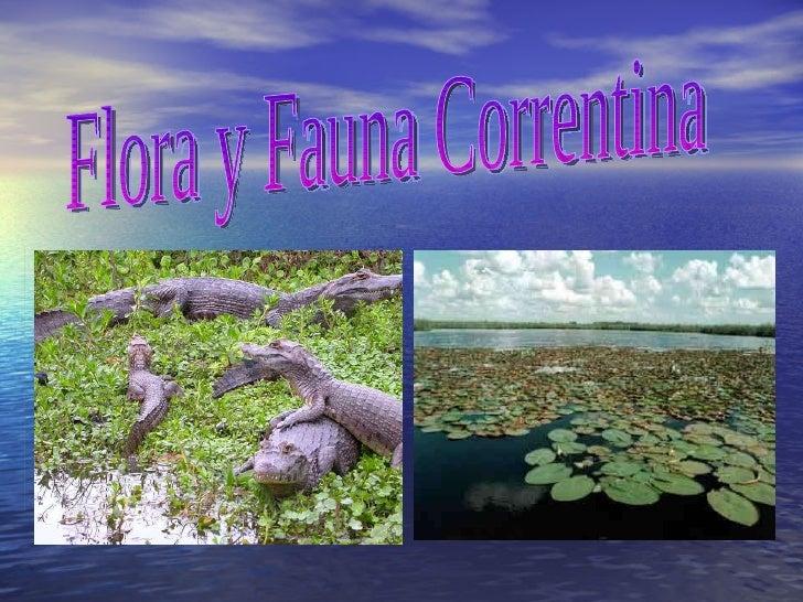 Flora y Fauna Correntina