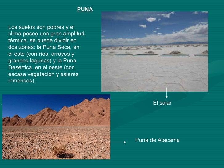 Biomas del noa for Informacion sobre el suelo