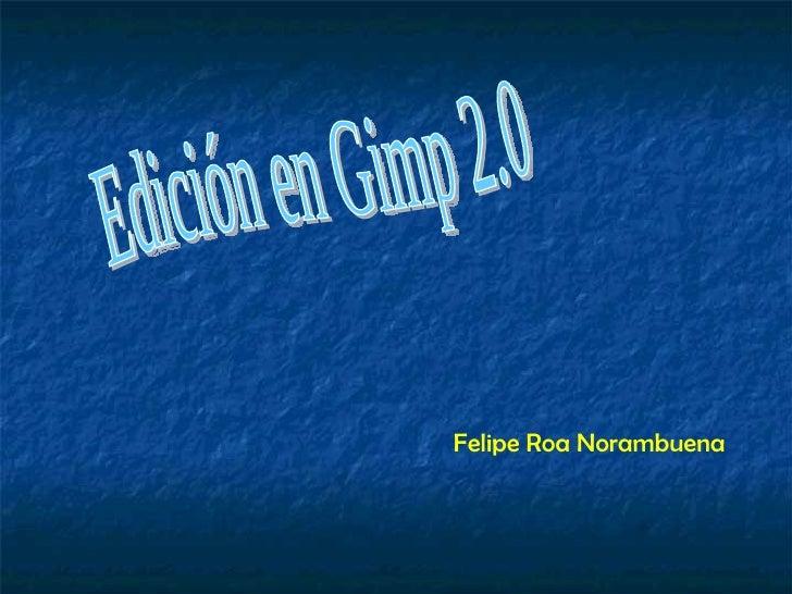 Edición en Gimp 2.0 Felipe Roa Norambuena