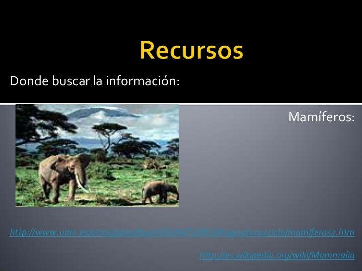 Donde buscar la información:                                                              Mamíferos:http://www.uam.es/otro...