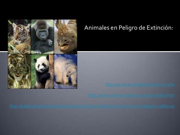 Animales en Peligro de Extinción:                                               http://www.animalesenextincion.info       ...