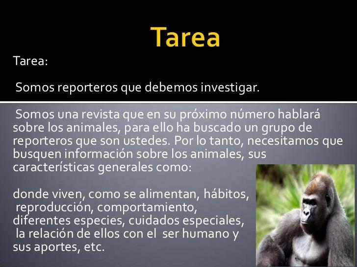 Tarea:Somos reporteros que debemos investigar. Somos una revista que en su próximo número hablarásobre los animales, para ...