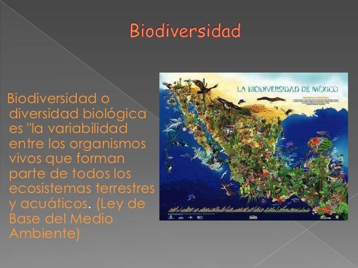 """Biodiversidad odiversidad biológicaes """"la variabilidadentre los organismosvivos que formanparte de todos losecosistemas te..."""