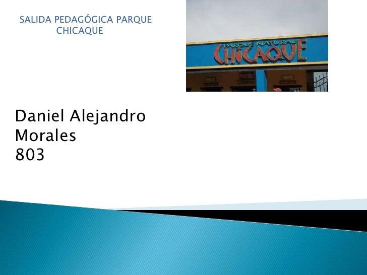 SALIDA PEDAGÓGICA PARQUE    CHICAQUE <br />Daniel Alejandro Morales <br />803<br />
