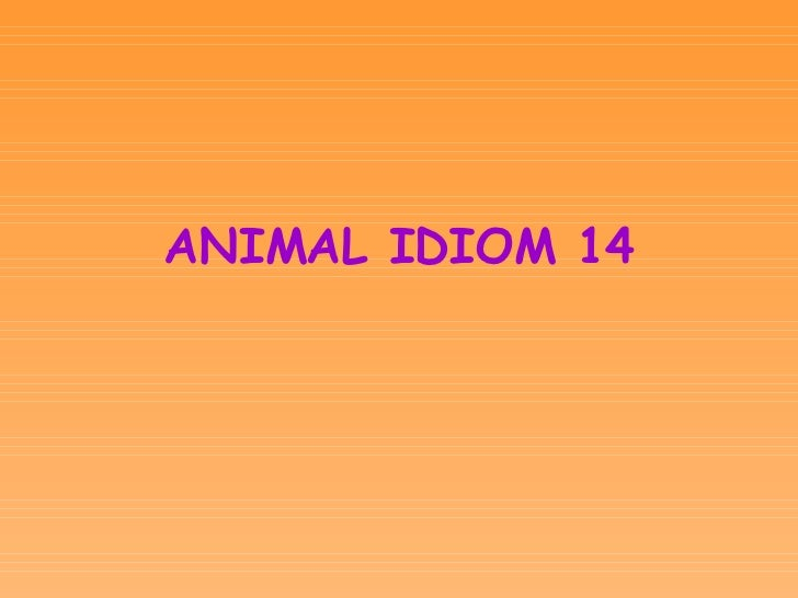 <ul><li>ANIMAL IDIOM 14 </li></ul>