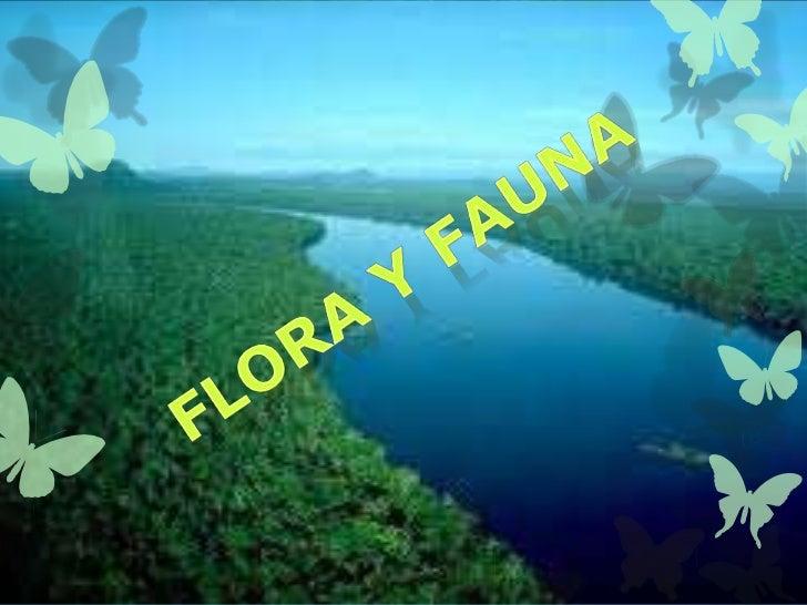 """LA GUACAMAYAEl aprovechamiento de la """"amazonia enpie"""", es otra de las importancias paranuestro país. Es decir, aprovechar ..."""