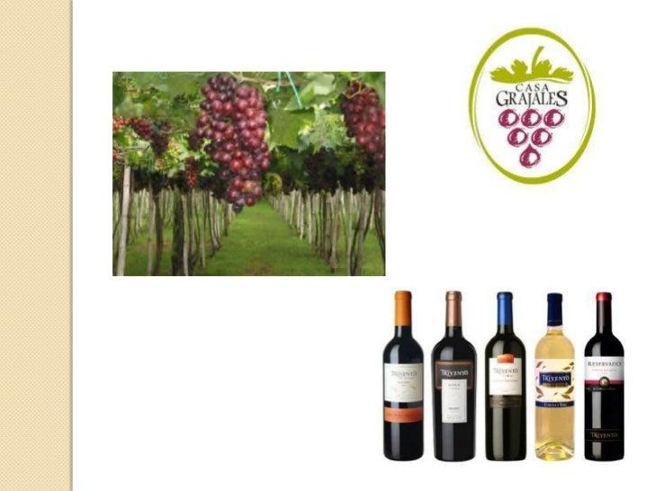 ACTIVIDADES Y PROCESOS1.   Escoger la uva de los viñedos.2.   Separar la uva verde de la roja.3.   Pasar por una máquina d...