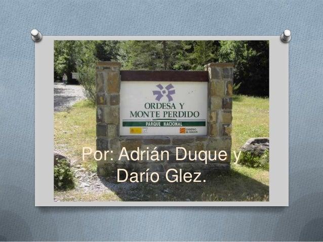 Por: Adrián Duque y     Darío Glez.