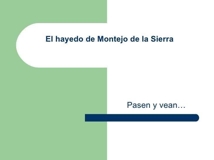 El hayedo de Montejo de la Sierra Pasen y vean…