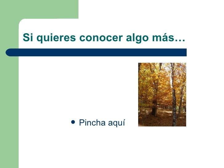 Si quieres conocer algo más… <ul><li>Pincha aquí </li></ul>