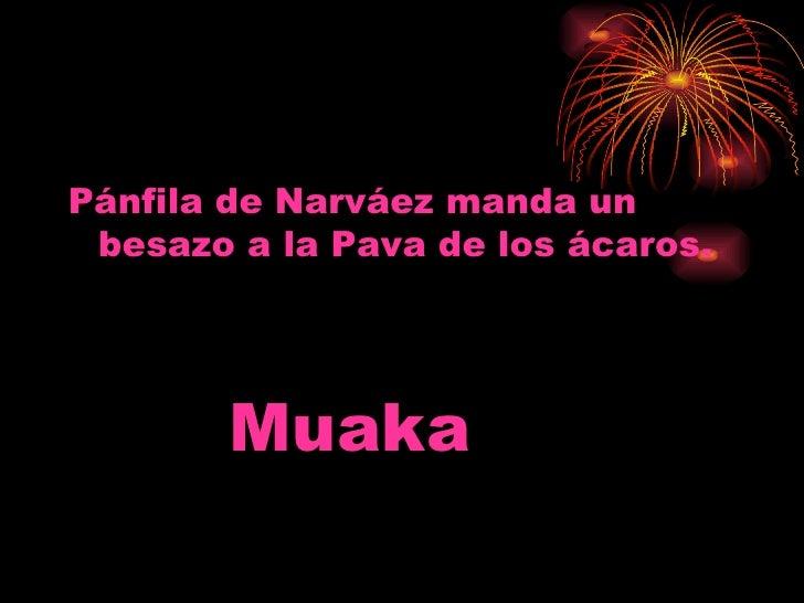 <ul><li>Pánfila de Narváez manda un besazo a la Pava de los ácaros. </li></ul><ul><li>Muaka </li></ul>