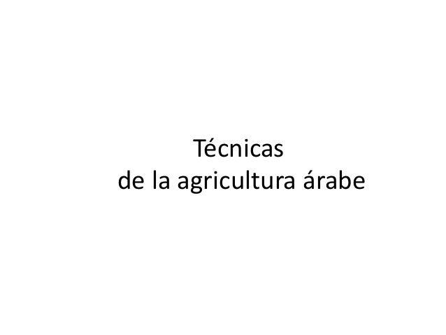 Técnicasde la agricultura árabe