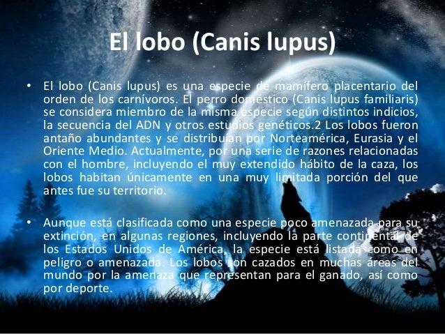 LOBOS Slide 2