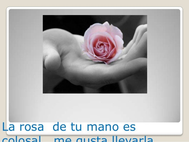 La rosa de tu mano es