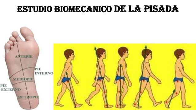 ESTUDIO BIOMECANICO DE LA PISADA
