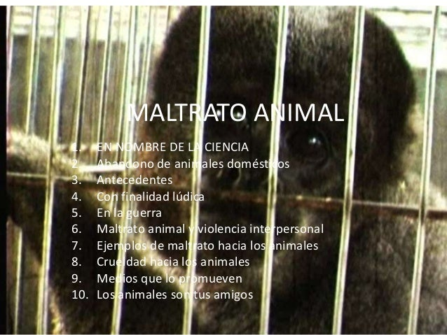 MALTRATO ANIMAL 1. EN NOMBRE DE LA CIENCIA 2. Abandono de animales domésticos 3. Antecedentes 4. Con finalidad lúdica 5. E...