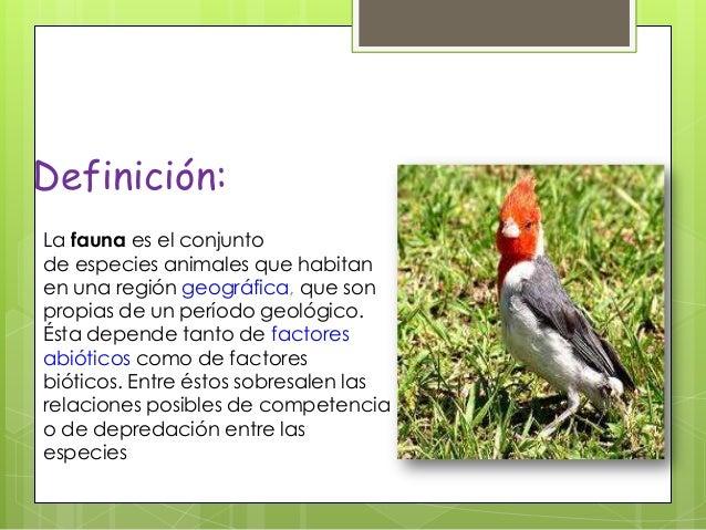 La Fauna 2