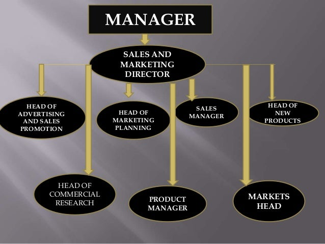 MANAGER SALES AND MARKETING DIRECTOR  HEAD OF ADVERTISING AND SALES PROMOTION  HEAD OF COMMERCIAL RESEARCH  HEAD OF MARKET...