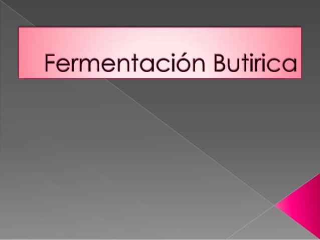 Descubierta por Pasteur en 1854,  es la conversión de los glúcidos en ácido butírico  acción de bacterias de la especie ...