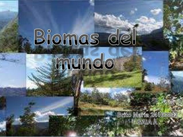   . Existen muchas áreas del planeta donde se encuentran    biomas de sabana. Estas incluyen África, Australia, Madagasc...