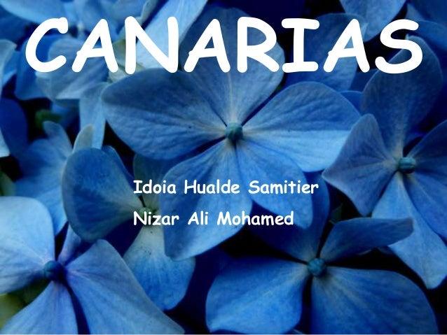 CANARIAS Idoia Hualde Samitier Nizar Ali Mohamed