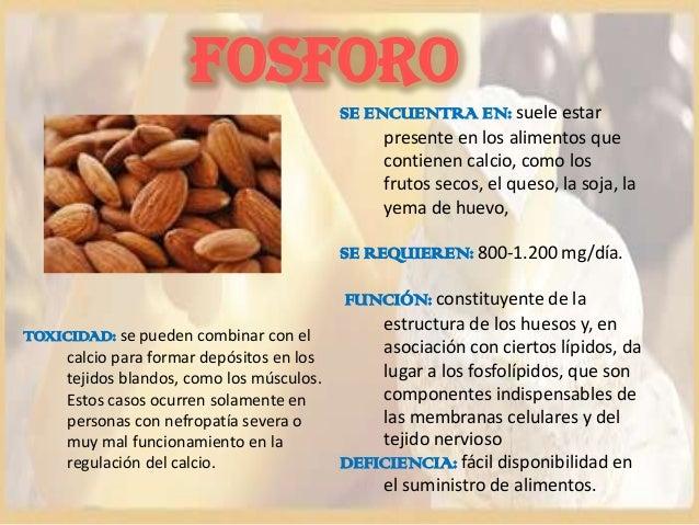 Jajdjsdjsj - Alimentos que tienen calcio ...