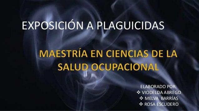 ELABORADO POR:  VIODELDA ABREGO  MELVA BARRÍAS  ROSA ESCUDERO EXPOSICIÓN A PLAGUICIDAS