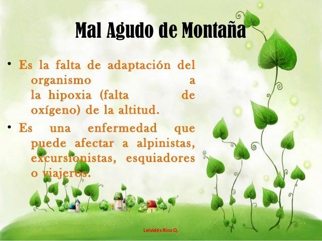 MAL AGUDO DE MONTAÑA Slide 2