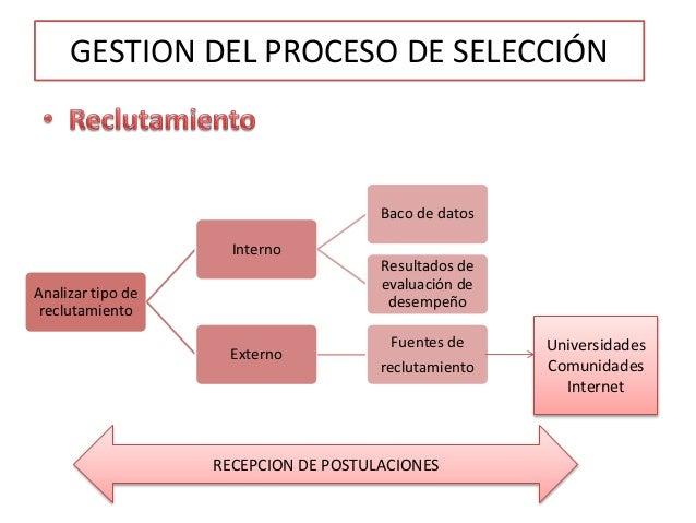 Proceso De Selecci N De Recurso Humano