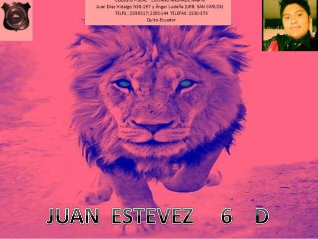 MULEUILI rIaLnL LULIHIHJ nnunnu:  IVFI'II  Juan Diaz Hidalgo NSB-197 y Ángel Ludeña [URB,  SAN CARLOS) TELFS. : 2599317; 2...
