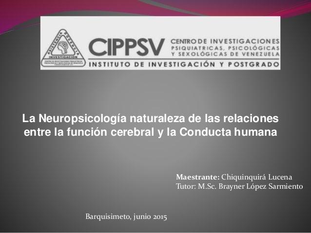 La Neuropsicología naturaleza de las relaciones entre la función cerebral y la Conducta humana Maestrante: Chiquinquirá Lu...