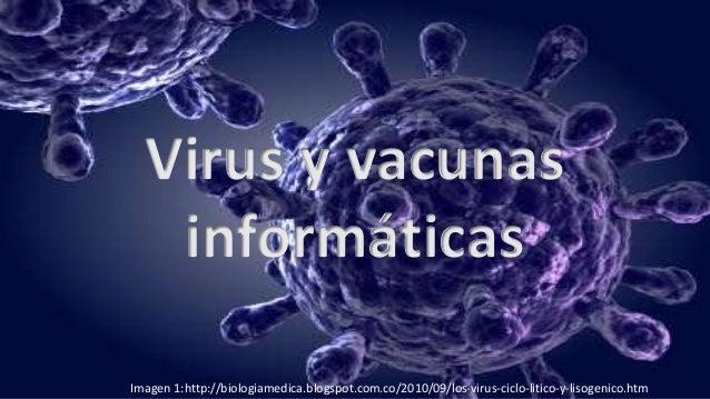 Virus y vacunas informáticas Imagen 1:http://biologiamedica.blogspot.com.co/2010/09/los-virus-ciclo-litico-y-lisogenico.htm