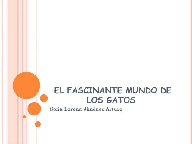 EL FASCINANTE MUNDO DE LOS GATOS Sofía Lorena Jiménez Arturo