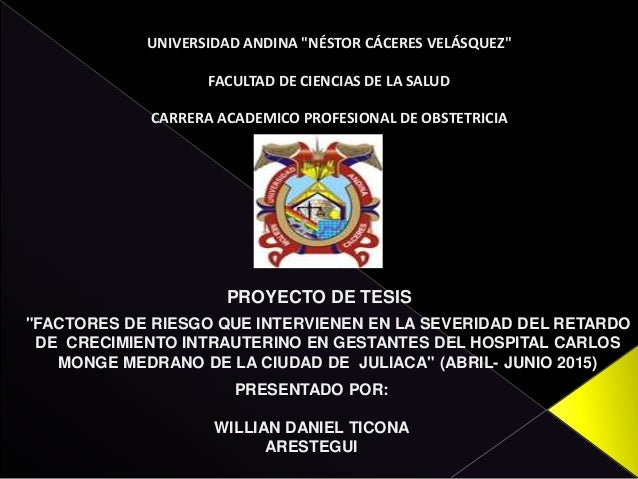 """UNIVERSIDAD ANDINA """"NÉSTOR CÁCERES VELÁSQUEZ"""" FACULTAD DE CIENCIAS DE LA SALUD CARRERA ACADEMICO PROFESIONAL DE OBSTETRICI..."""