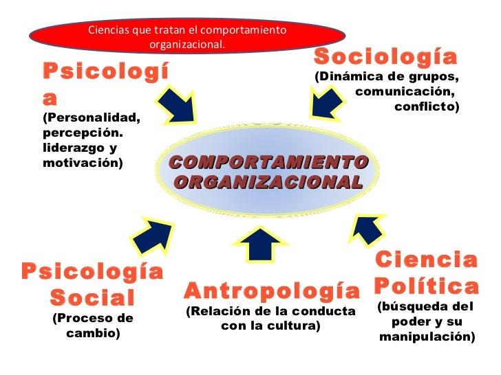 Fantástico Ciencias Del Comportamiento Viñeta - Anatomía de Las ...