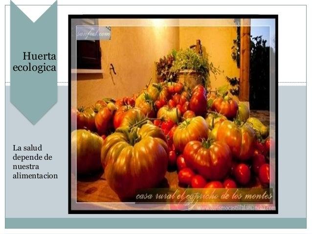 Huerta ecologica La salud depende de nuestra alimentacion