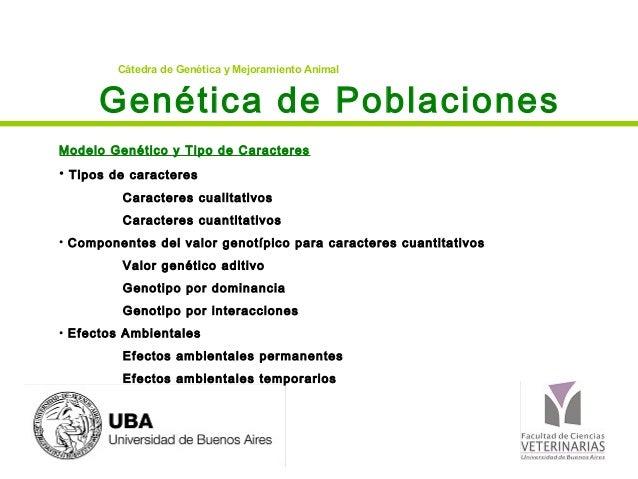 Cátedra de Genética y Mejoramiento Animal      Genética de PoblacionesModelo Genético y Tipo de Caracteres• Tipos de carac...