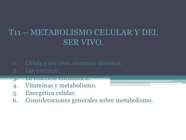 T11 – METABOLISMO CELULAR Y DEL SER VIVO. 1. 2. 3. 4. 5. 6.  Célula y ser vivo: sistemas abiertos. Las enzimas. La reacció...