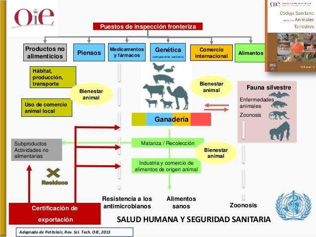 Colaboración y visión de la OIE respecto a Una Sola Salud