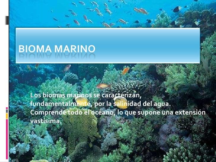 Bioma Marino <br />Los biomas marinos se caracterizan, fundamentalmente, por la salinidad del agua. Comprende todo el océa...