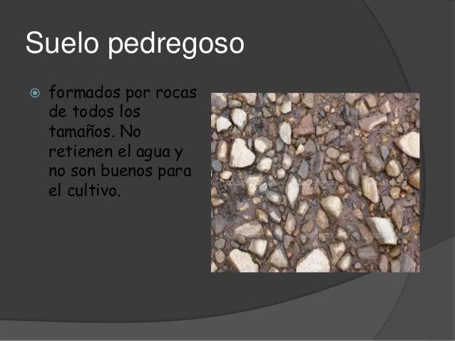Presentaci n 14 for Suelo pedregoso