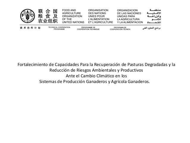 Fortalecimiento de Capacidades Para la Recuperación de Pasturas Degradadas y la Reducción de Riesgos Ambientales y Product...
