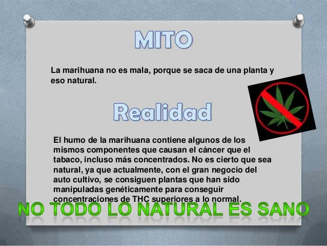 Mitos y realidades sobre las drogas Slide 2