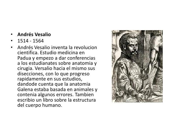 Atractivo El Padre De La Anatomía Colección de Imágenes - Anatomía ...