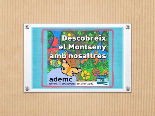 Cicle Inicial • Alzinar de Montseny • Font Ferrussa Pit-roig • Curs Alt de la Tordera Educació Infantil • Font Ferrussa de...