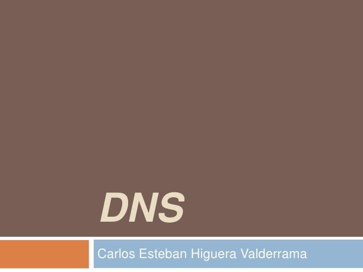 DNSCarlos Esteban Higuera Valderrama