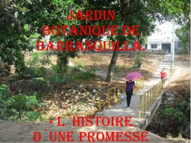Jardin botanique de barranquilla. « l´histoire d´une promesse