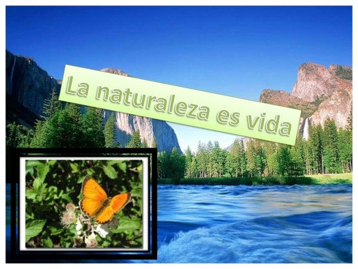 La naturaleza es vida<br />