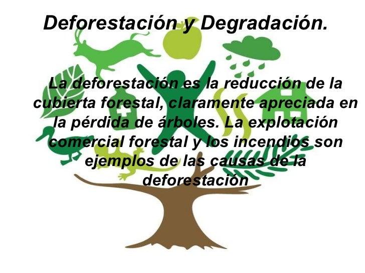 D a mundial del medio ambiente for Dia del arbol 01 de septiembre
