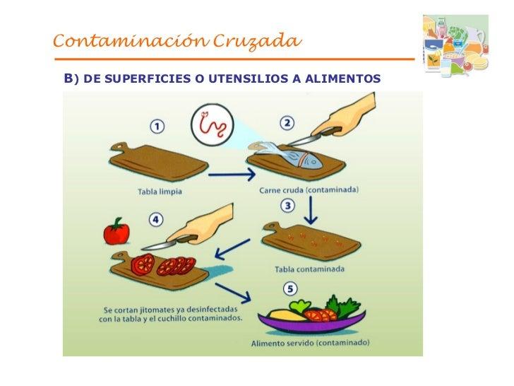 Presentaci n1 web for La cocina de los alimentos pdf
